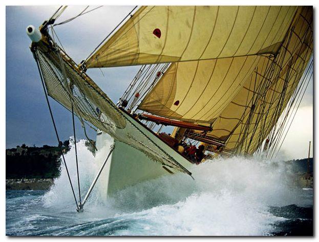 Sailing by Onne van der Wal (2013, Hardcover)